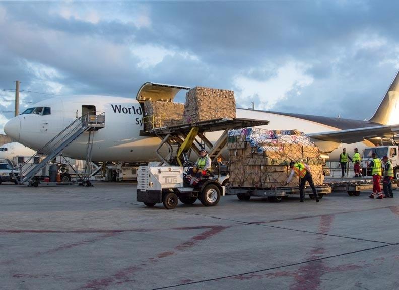 UPS每年情人節運送了8900萬支的玫瑰花到世界各地。
