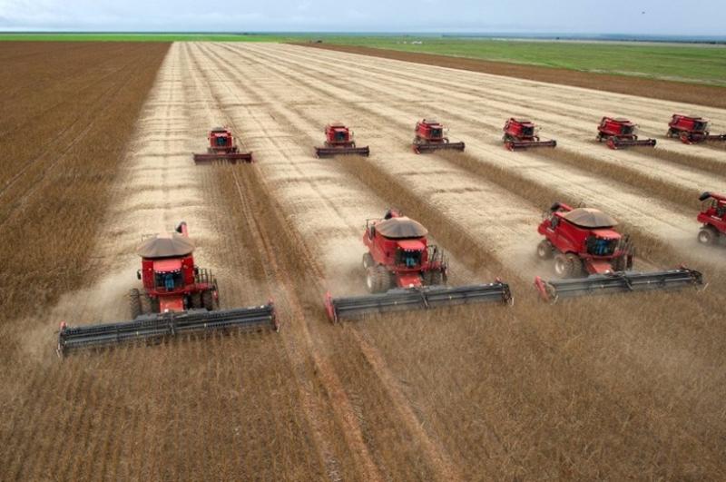 AI在農業領域的應用有耕作、播種、採收,病蟲害、土壤探測和氣候災難預警…  (圖:AFP)