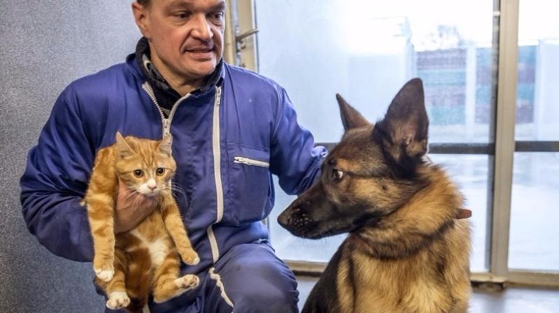 亞馬遜預測未來「寵物翻譯器」 可以解決人類與寵物間的溝通障礙。 (圖:AFP)