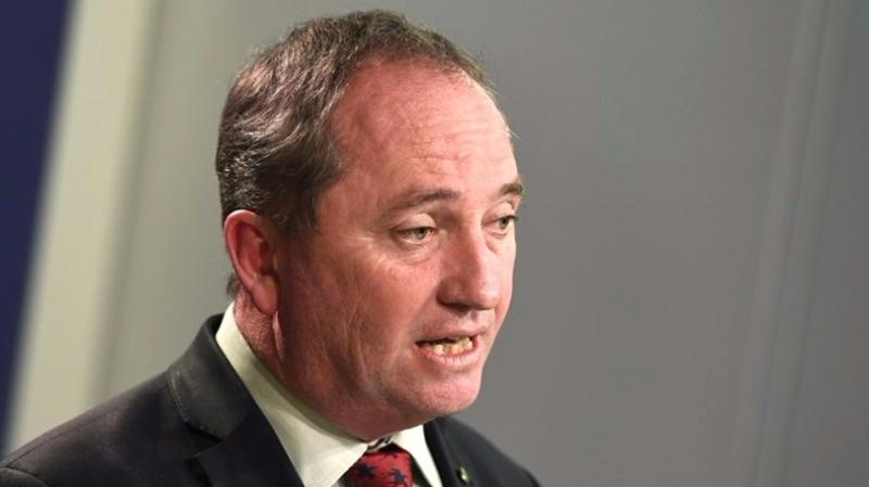 澳洲副總理喬伊斯被揭擁有紐西蘭國籍。  (圖:AFP)