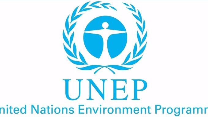UNEP報告稱,不能有效殺死耐藥性病原體,導致全球每年約有70萬人死於耐藥性細菌感染。 (圖取材自網路)