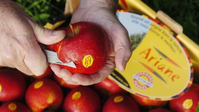 蘋果。(圖:AFP)