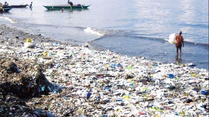 科學家警告 海洋無氧「死區」面積爆增3倍 生物恐大滅絕