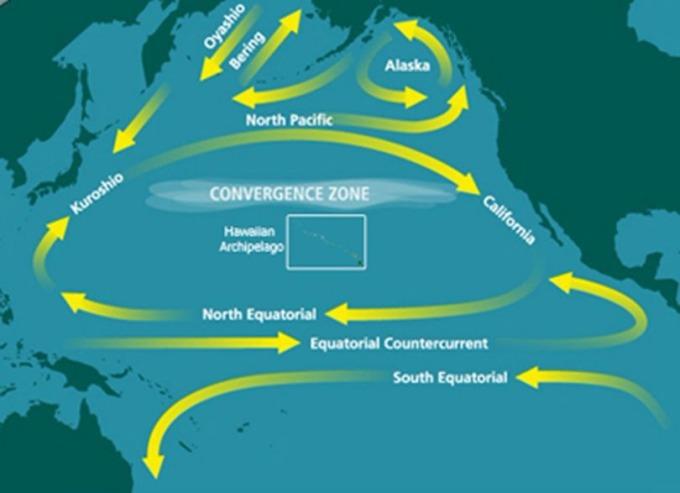 海流在北太平洋環流螺旋向內,成了廢棄物聚集的輻合帶。 (圖:維基百科)