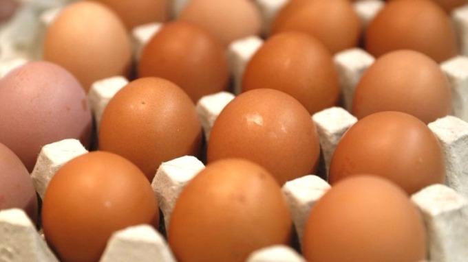 北卡羅來納州一家農場生產的雞蛋可能被沙門氏菌污染,已造成至少22人患病。 (圖:AFP)