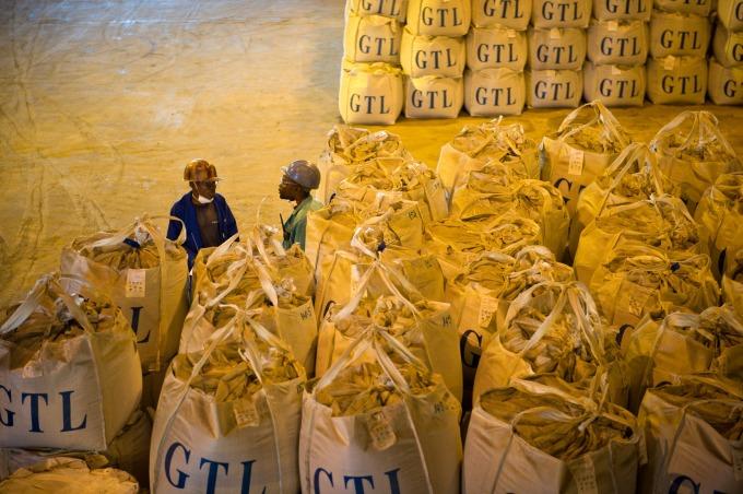 全球一半以上的鈷礦源來自飽受戰爭蹂躪的剛果民主共和國      (圖:AFP)