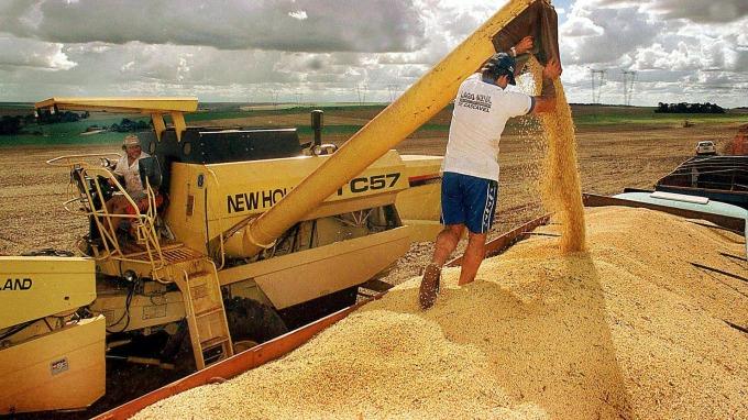 中國喊話能應對美國黃豆進口減少缺口