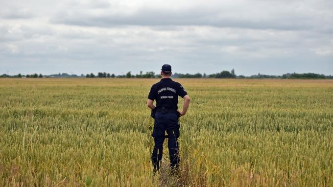 全球熱浪衝擊 東歐暴雨不止 歐洲小麥產量大減 價格飆升   鉅亨網 - 農作