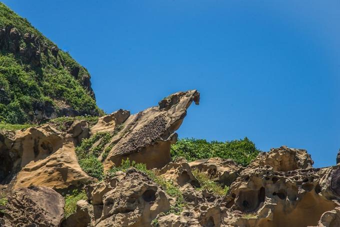 站在岩頂上的黑鳶岩傲視四方
