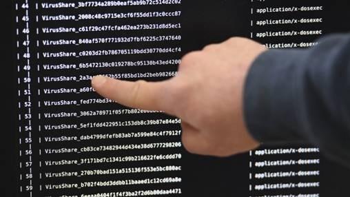 (圖四:電腦病毒危害編碼圖片,AFP)