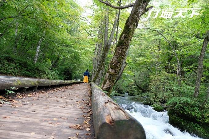 沿溪完備的健行步道讓人逍遙而行。