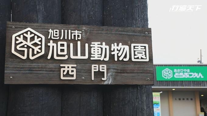 日本最北的動物園旭山動物園。