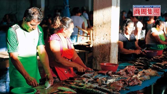 亞馬遜河裡駭人的食人魚,在伊基托斯市場裡,卻成了小販的魚貨和盤中飧。(攝影者.傅正耀)