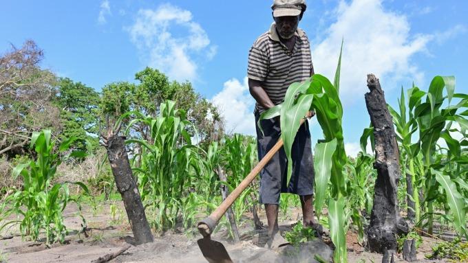 久雨不休 美國穀農今年運氣太背(圖:AFP)