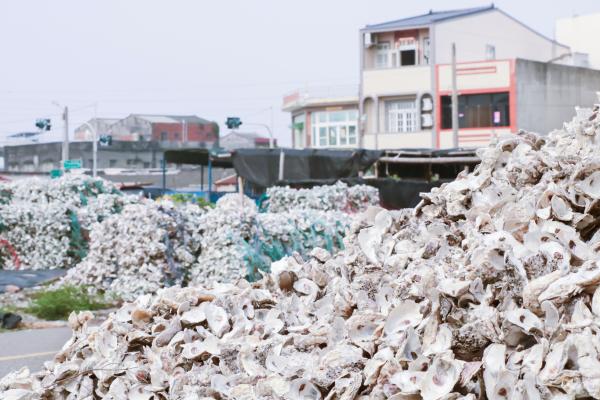 在西部沿海地區,當地牡蠣養殖業留下的蚵殼堆積如山,不僅占空間造成環境髒亂,也容易孳生蚊蟲。