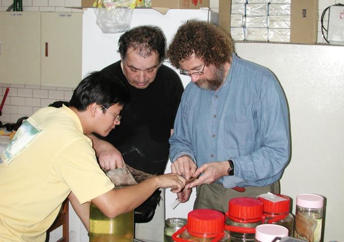 中研院近十年的研究工作,讓李柏鋒如同海綿,時刻吸收科學新知,與國際學者交流,鍛鍊起一身基礎研究功。 圖片來源│李柏鋒提供