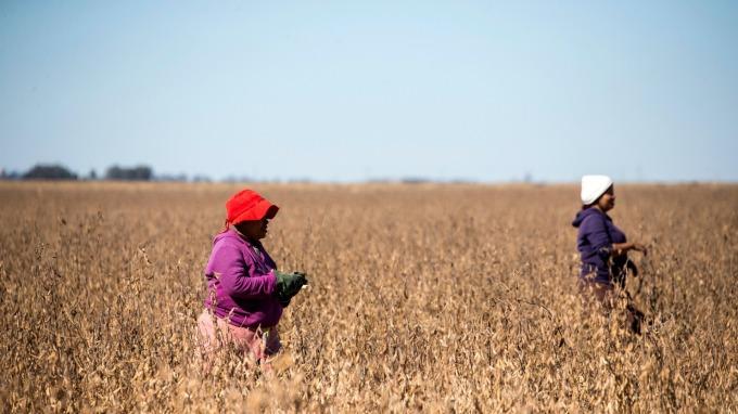 搶救美農 農業部再發第二批160億美元補助款 (圖片:AFP)