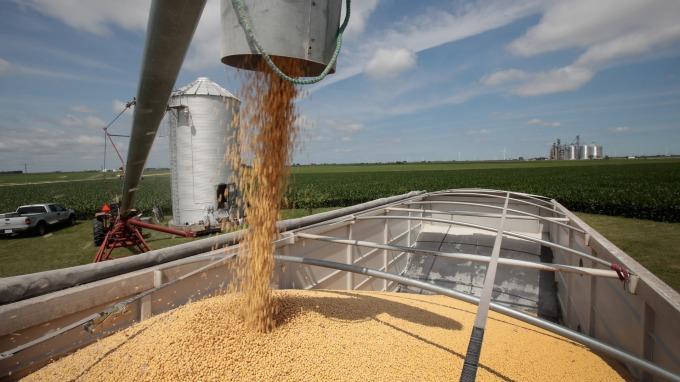 準備擴大美國以外農產品進口?中國8月將赴阿根廷考察豆粕壓榨(圖片:AFP)