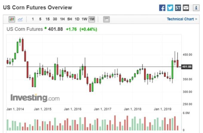 芝加哥期貨交易所 (CBOT) 玉米期貨週三收漲 (圖片:investing)