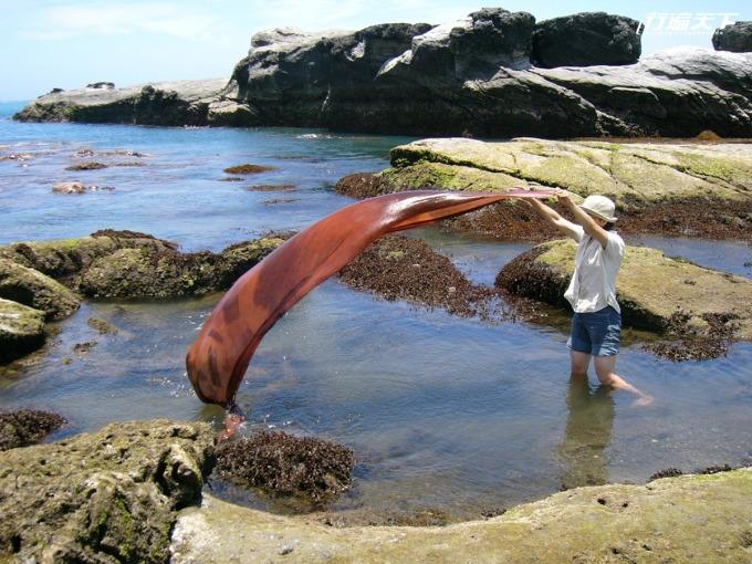 以樹薯染色後的作品放到海水中清洗,形成獨特的景況。(圖片提供│光織屋)