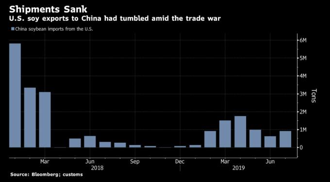 中國進口美豆之每月規模 圖片:Bloomberg