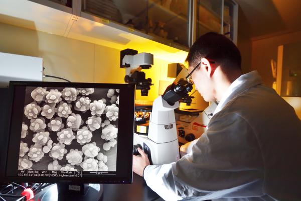 「仿生多突狀磁珠製備技術」未來也可應用於其他免疫細胞療法,搭配對細胞進行分析與檢驗,找到更適合病患的治療方法與投放藥物。