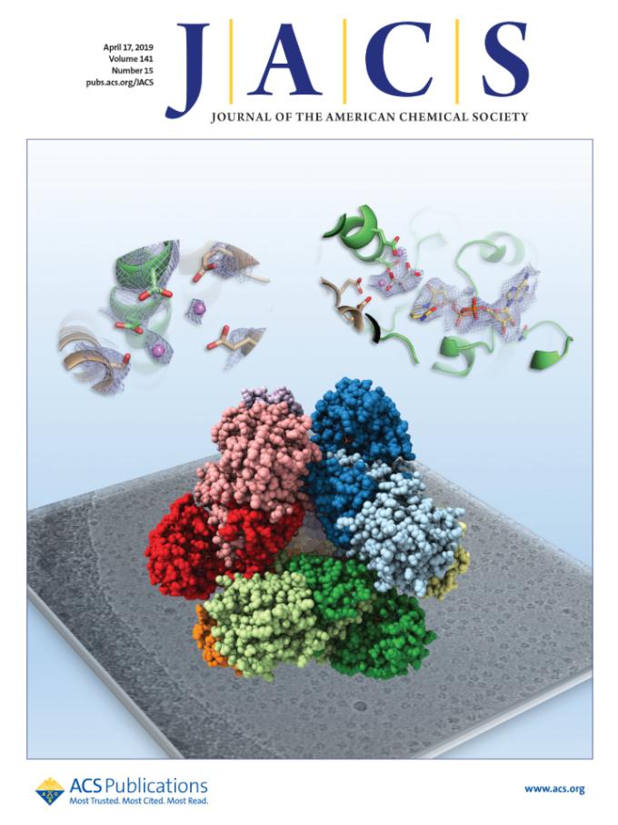 4 月 17 日出版的《美國化學學會期刊》,蔡道明院士此次的研究成果「蛋白質酵素 3D 立體結構圖」,獲選為當期封面,可見原子級的解析力。 圖片來源│《美國化學學會期刊》(Journal of the American Chemical Society)
