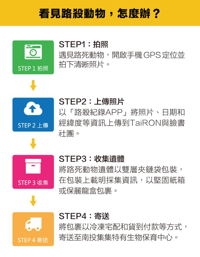 資料來源│台灣動物路死觀察網 圖說重製 │林洵安