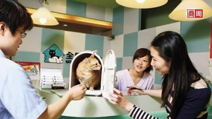 台灣寵物將比小孩多,富邦、新光等9家業者搶攻。(圖:商業周刊)