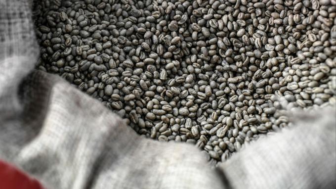 氣候乾旱 拉美產量大減 咖啡期貨價格飆漲逾25%  (圖:AFP)