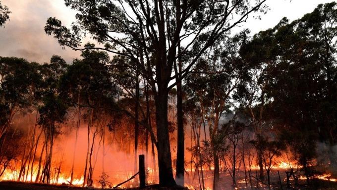 澳洲大火帶來碳排放危機(圖:AFP)