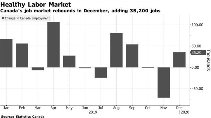 加拿大就業人數變化 (圖:Bloomberg)