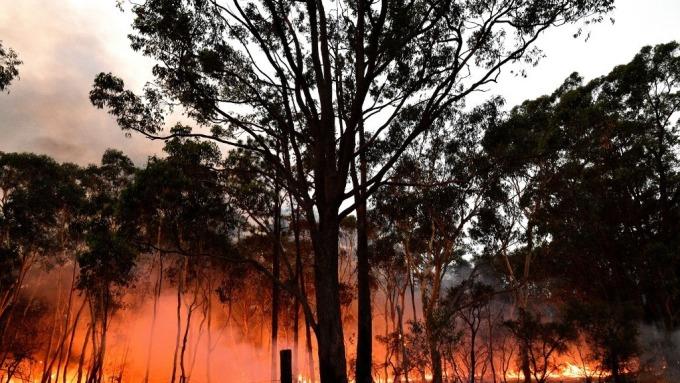 野火燒不停 消費者信心低迷 澳洲企業預計受創(圖:AFP)