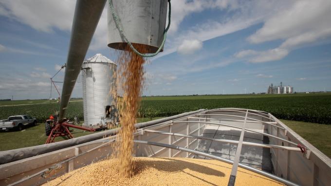 中國購買美國農產缺乏具體計畫 黃豆期貨週三下挫(圖:AFP)