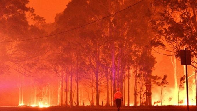 【財經M平方】澳洲野火燒出經濟隱憂?2020投資澳幣應該關注的兩大面向。(圖:AFP)