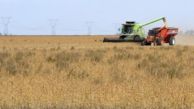 美中貿易戰農產品未解 美農民破產數達8年新高 (圖:AFP)
