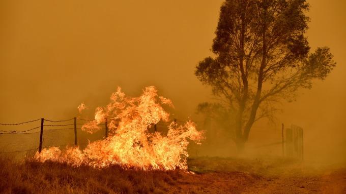 世衛:中國境外案例是星火 恐將燎原。(圖片:AFP)
