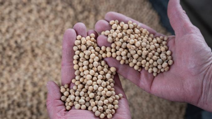 彭博:關稅豁免准了 中國買家重回美農產品市場(圖片:AFP)