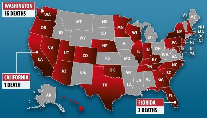目前美國 50 州已有約 60% 染疫 圖片:The Sun
