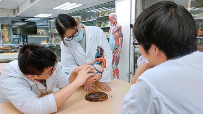 科技巨擘搶數位醫療人才 陽明醫學系首創醫師工程師。(圖:陽明大學提供)