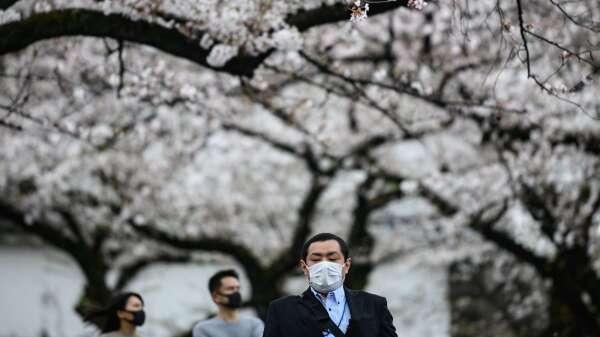 緊急狀態1個月對日本衝擊多大?高盛估Q2萎縮25% 出口暴減60%