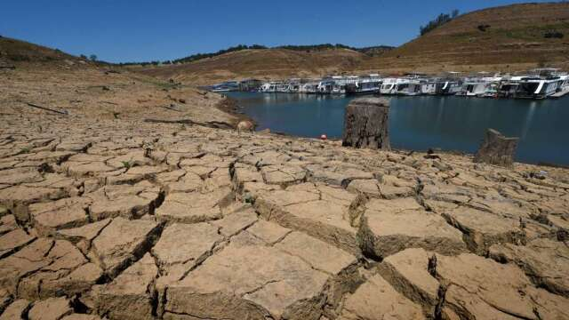 美西已出現「特大乾旱」?(圖:AFP)