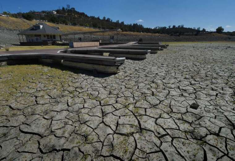 乾旱打擊農業 (圖: AFP)