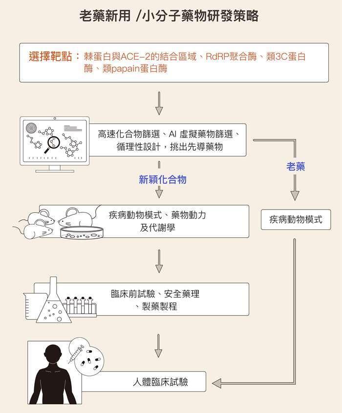 資料來源│謝興邦 圖說重製│林洵安