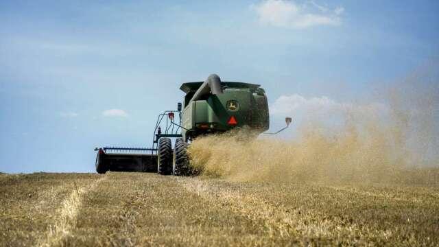 擴大採購?中國允許由美國進口大麥及其他農產品(圖:AFP)
