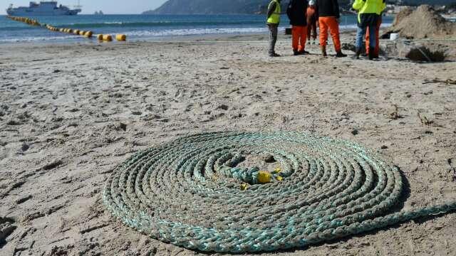 臉書聯手中國移動 為非洲和中東建設大型海底電纜   (圖片:AFP)