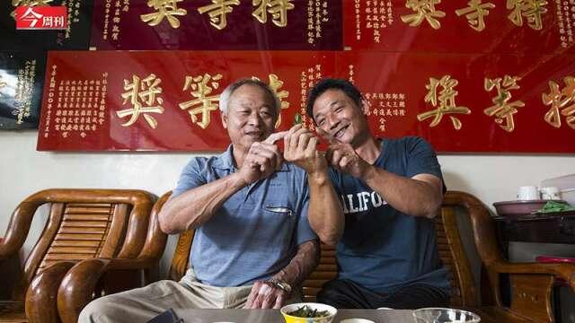 1台斤100萬「我不是在巡茶園,就是在家泡茶」看這對父子如何種出天價茶?(圖:今周刊提供)