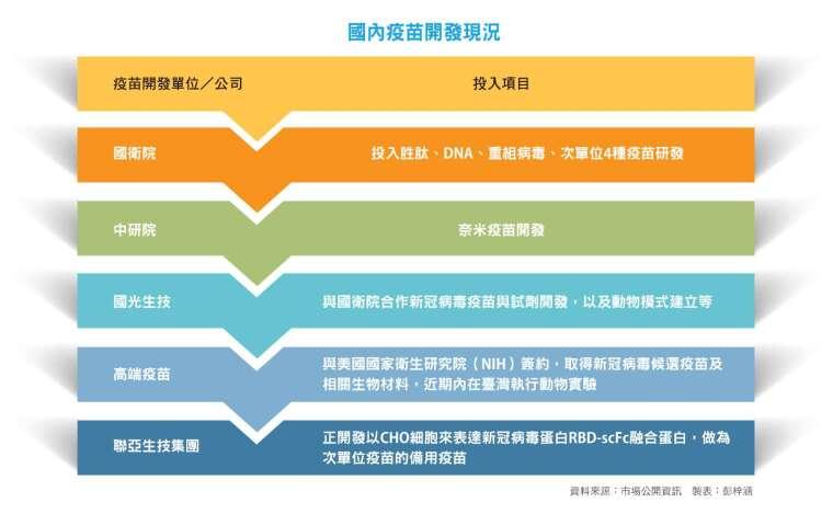 國內疫苗開發現況(疫苗開發單位/公司 投入項目)。
