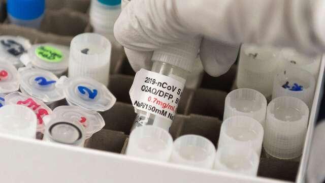 疫苗成關鍵!經濟學家: V型復甦「完全有可能」實現 (圖片:AFP)