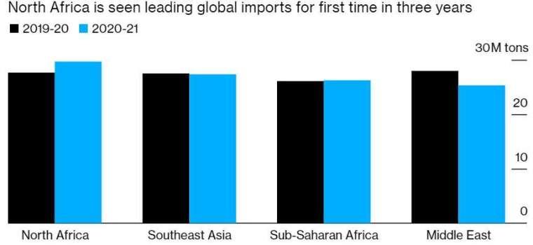 北非近三年來將首度成為全球最大的小麥買家。(來源:USDA)